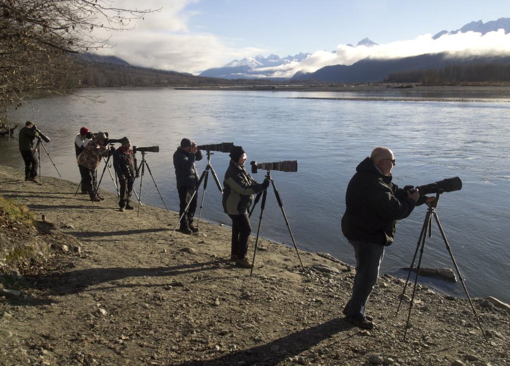 Eagle photographers along the Chilkat River. (Credit: John Hagen)