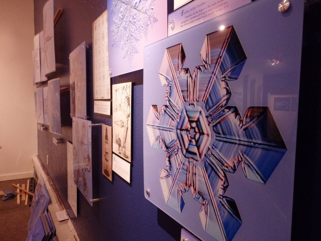 Snowflake pictures taken by Kenneth Libbrecht.