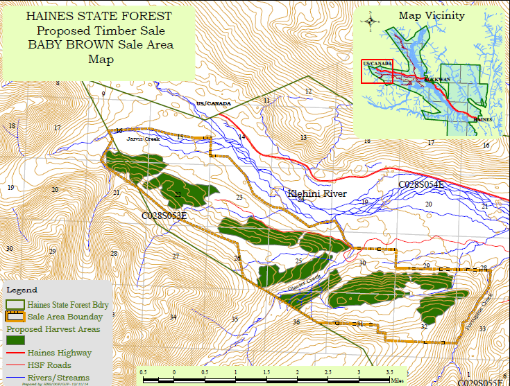 1,000-acre timber sale proposed for Haines State Forest