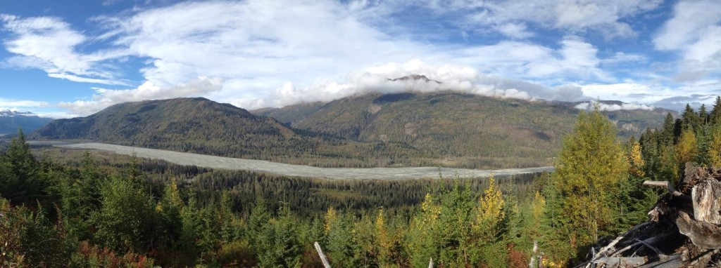 Haines State Forest