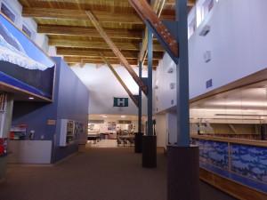 Haines School (Emily Files)