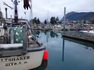 Fishing boats in the Haines small boat harbor. (Jillian Rogers)