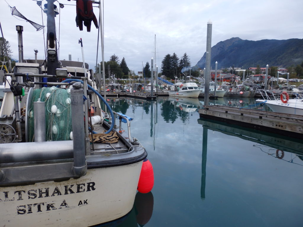 Lack of applications could mean Haines harbor committee stays the same, despite requirement changes