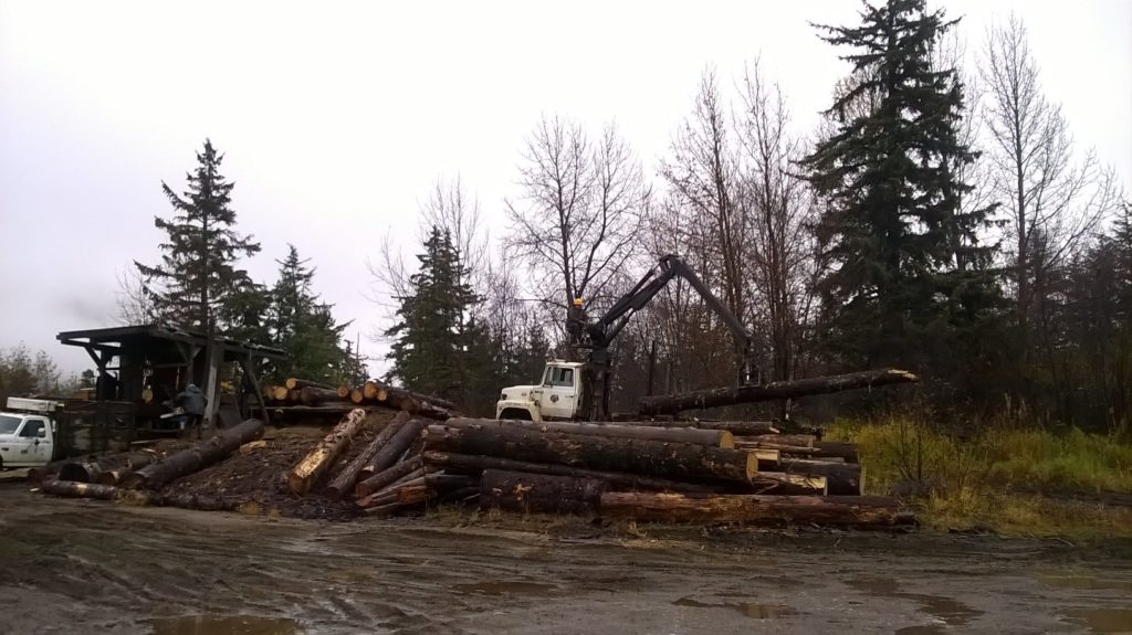 DNR announces three-month closure of Haines forestry office