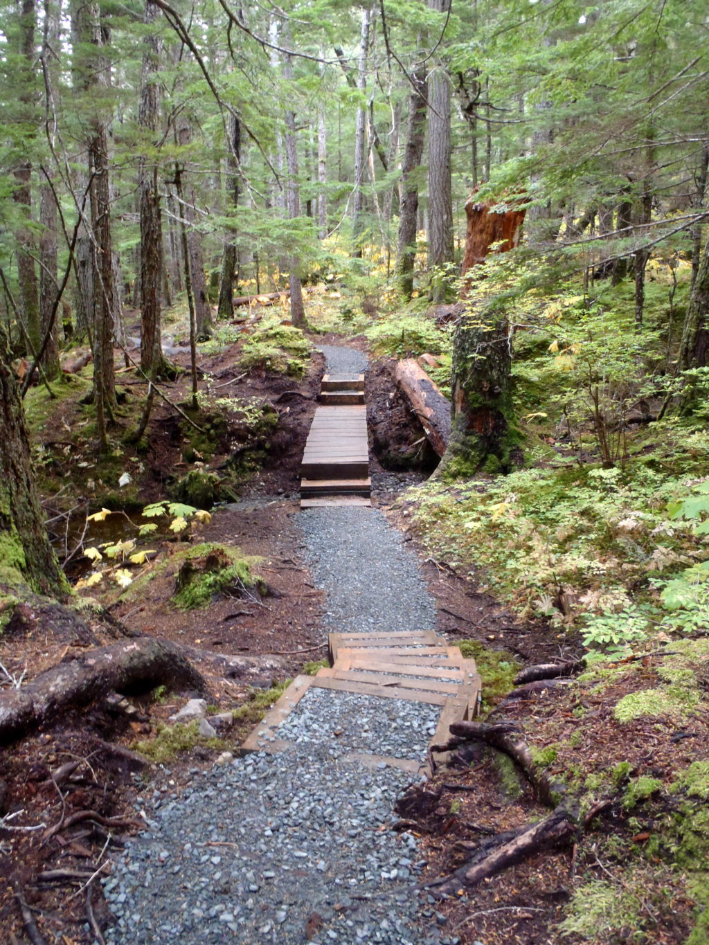 Committee seeks ideas to improve Haines trail offerings
