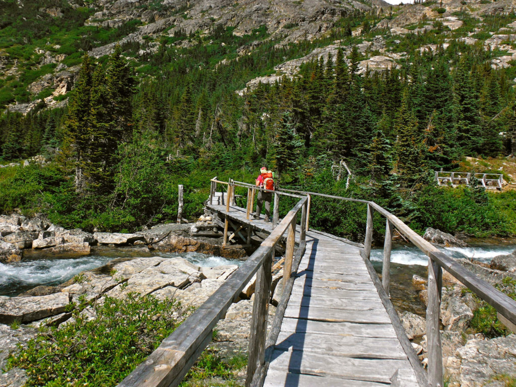 A hiker on the Chilkoot Trail heading toward Lindeman City, where a bear broke into a staff cabin. (Flickr Creative Commons/Joseph)