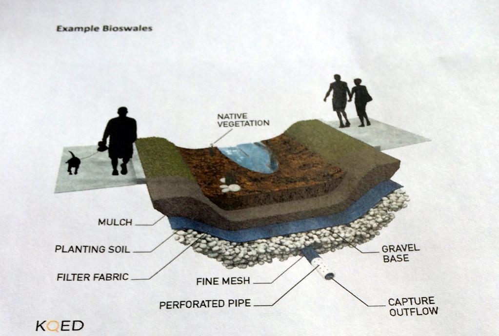 Takshanuk unveils new bioswale project
