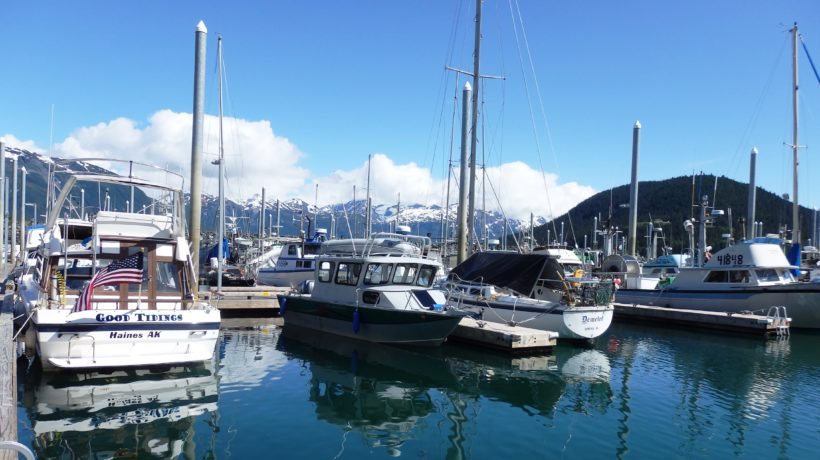 The Haines small boat harbor on a sunny summer day. (Emily Files)