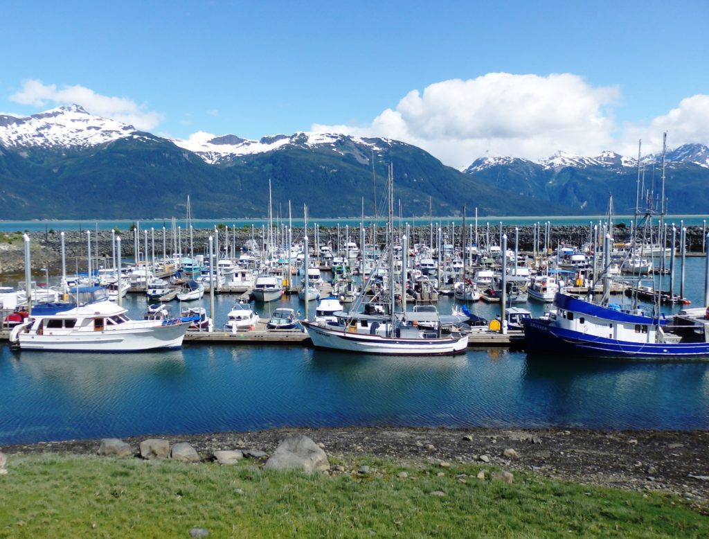 The Haines Portage Cove Harbor. (Emily Files)
