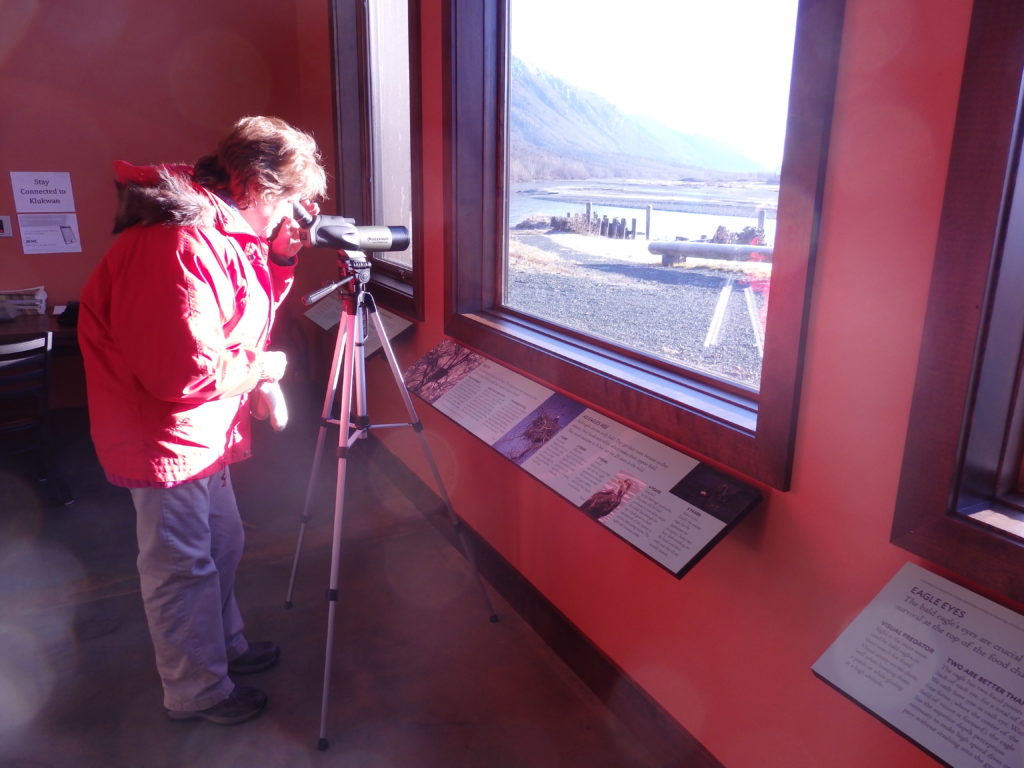 A visitor using a spotting scope to view eagles on the Chilkat River from inside the heritage center. (Emily Files)