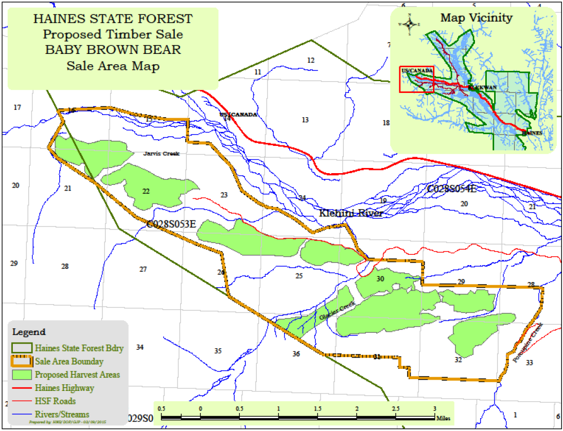 Largest Haines State Forest timber sale in a generation goes out to bid