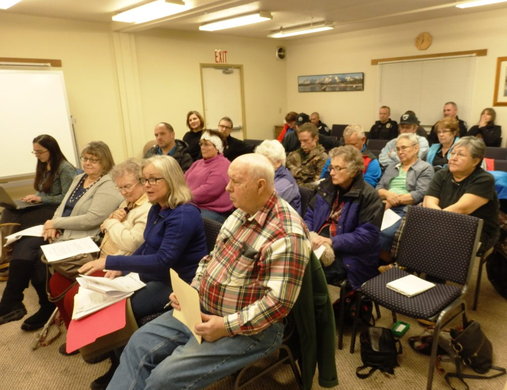 Senior village board members and residents petitioned the assembly finance committee for financial support. (Emily Files)
