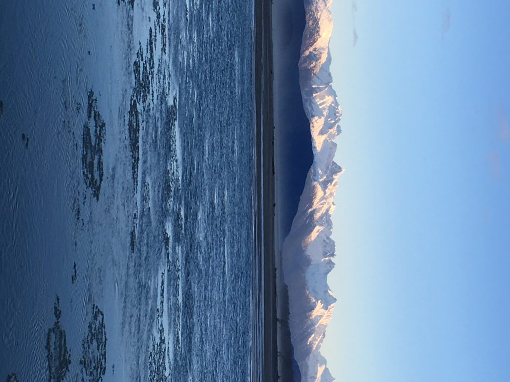 The Chilkat River. (Abbey Collins)