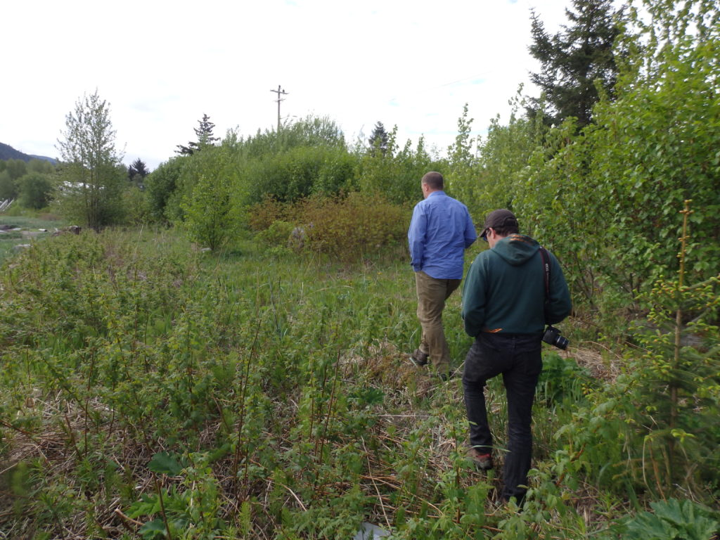 A walk along the proposed waterfront trail in Haines