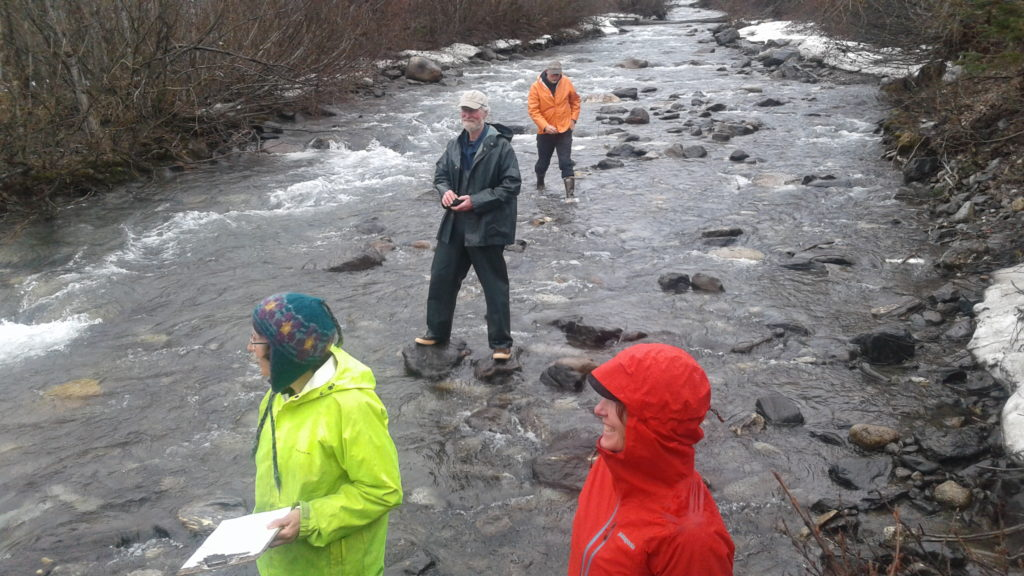 Stream temperature monitoring could provide insight into important fish populations