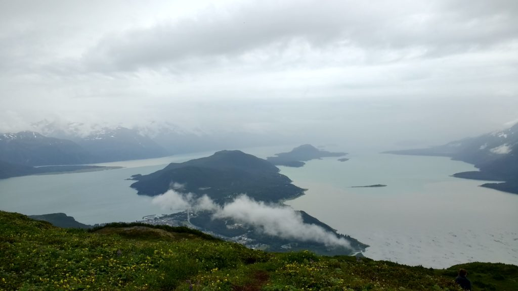 The view from Mount Ripinsky on a rainy July day in Haines. (Emily Files)