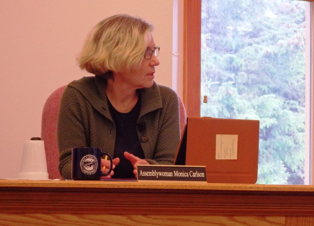 Monica Carlson was appointed to the Skagway Assembly in June. She is now running as a write-in for mayor. (Emily Files)