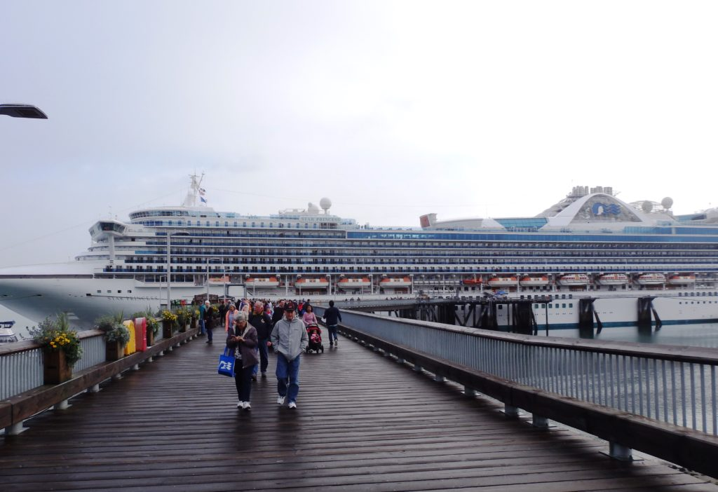 The Star Princess was diverted to Haines after the Skagway rockslide. (Emily Files)