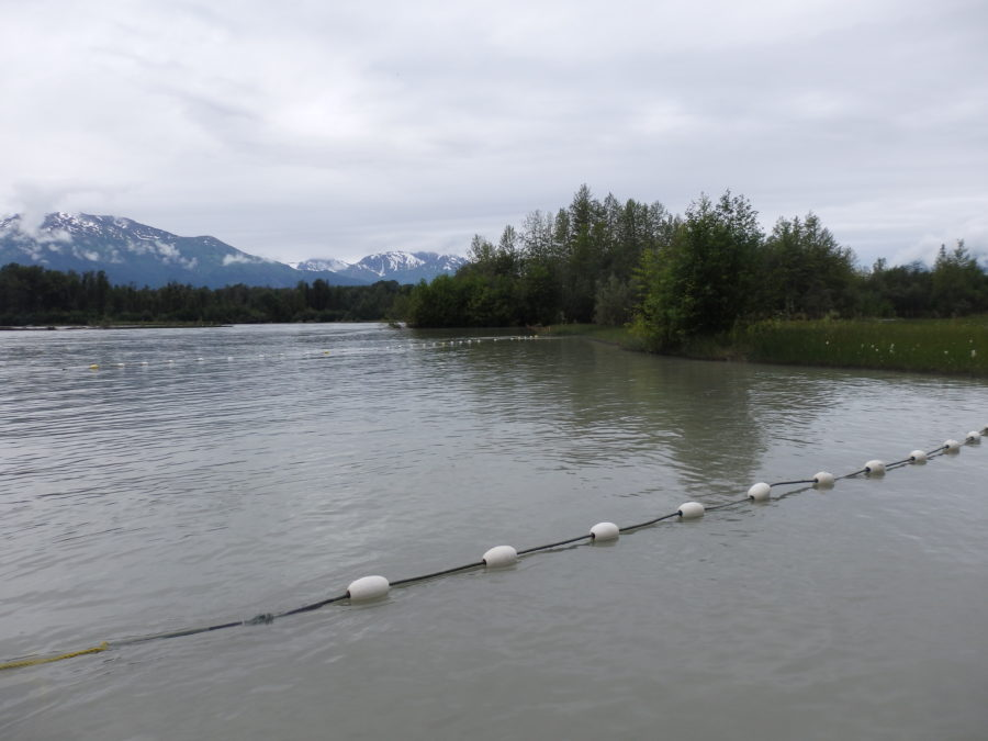 Local committee debates Chilkat River subsistence fishing restrictions