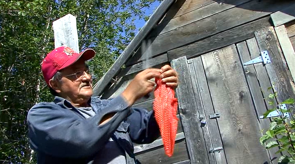 Fred Strong demonstrates how to make dry fish in one of the award-winning short films.