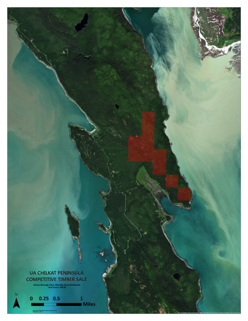 The proposed timber sale area on a map created by Haines Planner Holly Smith. (Courtesy Haines Borough)