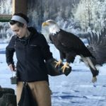 American Bald Eagle Foundation opens aviary for unguided public visits