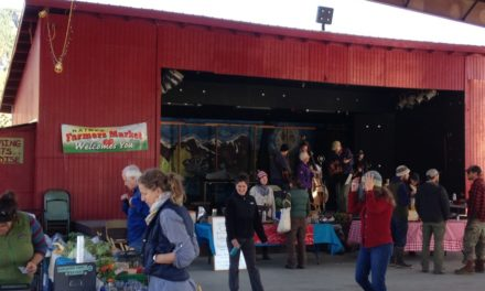 Haines Farmers Market wrapping up after successful season