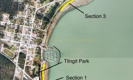 Arts Confluence to contract New York design firm to assist with Portage Cove trail