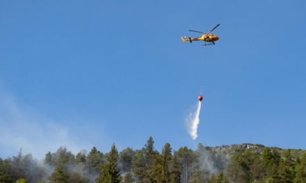 USFS and local firefighters continue to battle 8.5 mile fire