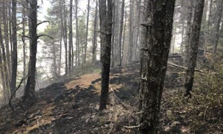 """The """"8.5 mile"""" fire destroys a home, spreads to State Forest land"""