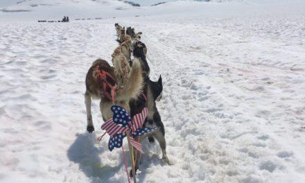Heatwave shuts down dog sled tour on Denver Glacier early