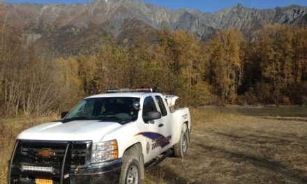 Alaska Wildlife Troopers investigating bear mauling on the Chilkat River
