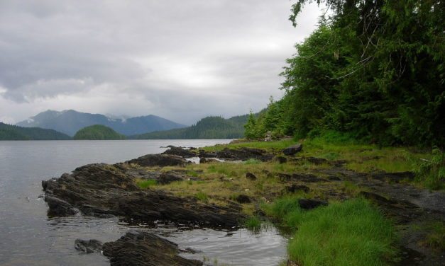 Haines residents ask the U.S. Forest Service to uphold the Roadless Rule